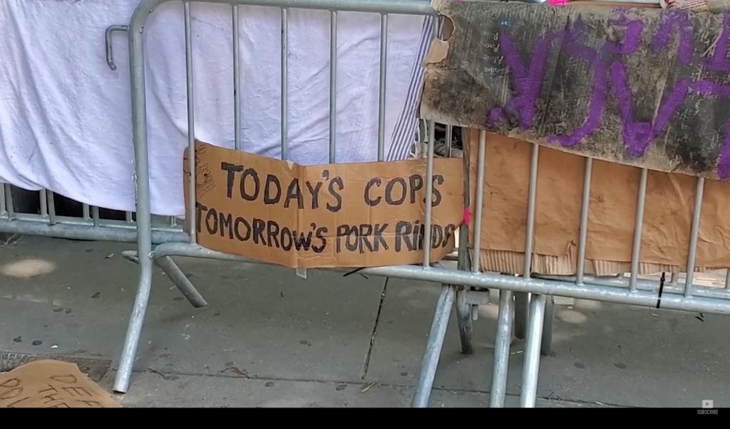 BLM cops
